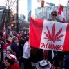 MARIJUANA: Canada unlikely to react to U.S. legalized states, say experts