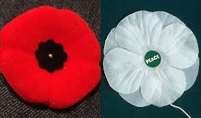 Red and White Poppy GigCity Edmonton